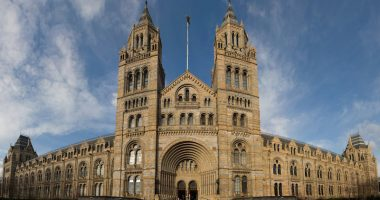 Natural History Museum to implement Elements